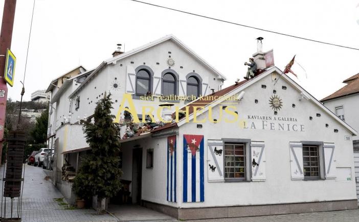 Veľký rodinný dom na bývanie spojené s podnikaním-Bratislava